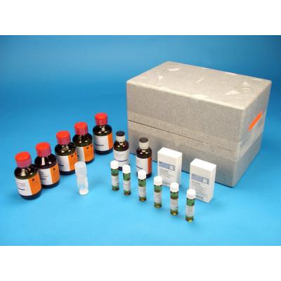 Equipo cromatografía B TLC Aminoácidos