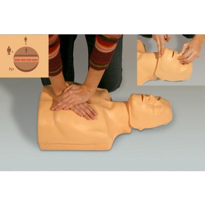Maniquí RCP torso indicador acústico