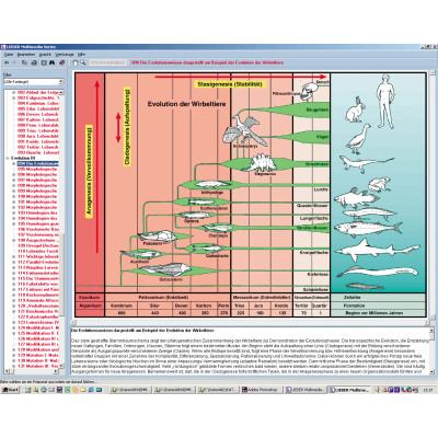CD: Origen y evolución de la vida