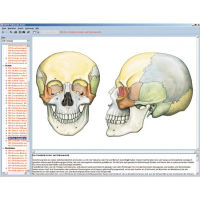 CD: El esqueleto, el sistema muscular y el aparato humano del movimiento