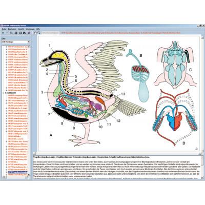 CD: El reino animal (zoología)