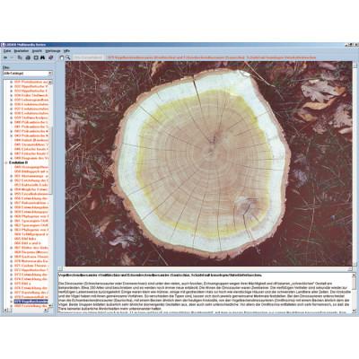 CD: El reino vegetal (botánica)
