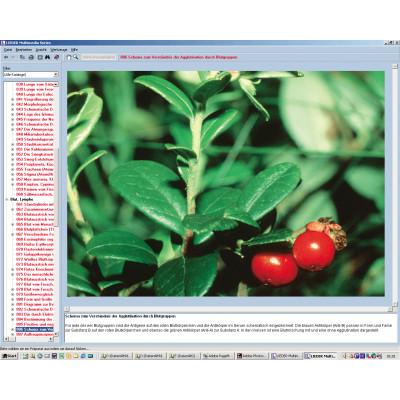 CD: Las plantas medicinales y tóxicas