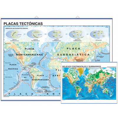 Lámina: Placas tectónicas / Relieves continentales y submarinos